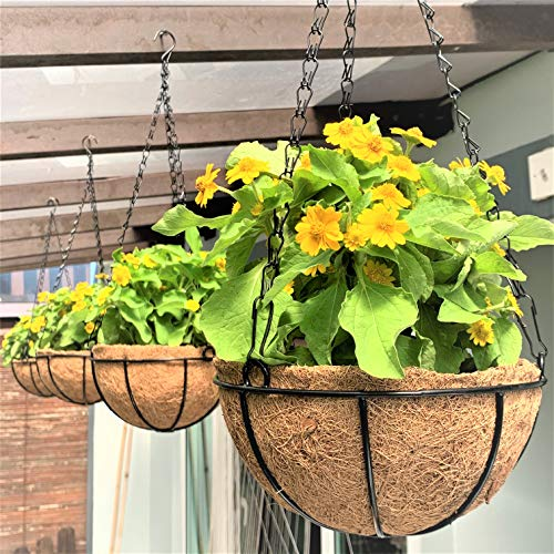 Hanging Basket for Plant - 4 Pack, 8 Inch, Small Hanging Metal Wire Planters with Coco Liner, Flower...