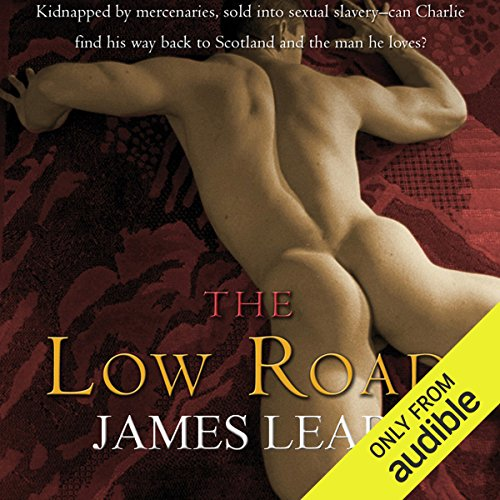 The Low Road Audiobook By James Lear cover art