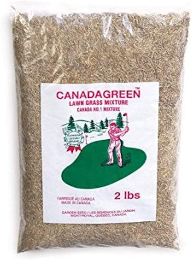 Canada Green Grass Lawn Seed New sales Pound Directly managed store 2 - Bag