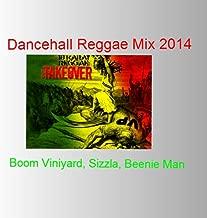 Dancehall Reggae Mix 2014 (feat. Turbulence & Dawn Penn)