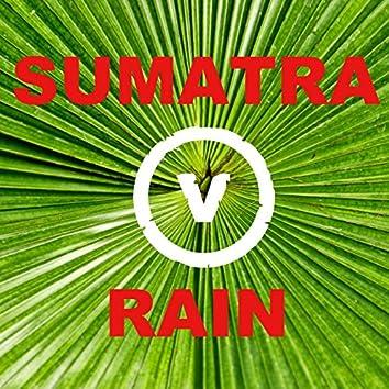 Sumatra Rain