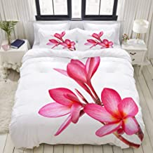 HKIDOYH Duvet Cover Set,Frangipani Flowers Isolated on The Background White,Polyester 3 Piece Bedding Set with 2 Pillow Ca...