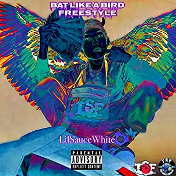 Bat Like A Bird Freestyle