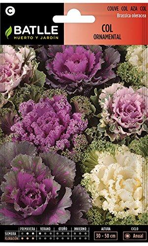 Semillas Hortícolas - Col ornamental variada - Batlle