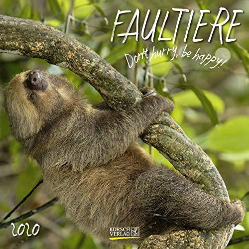 Faultier 2020: Broschürenkalender mit Ferienterminen. Format: 30 x 30 cm