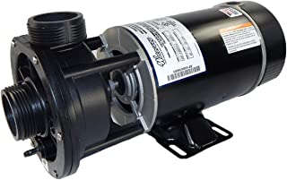 Waterway Plastics 3420310-15 3/4 hp 115V 2-Speed Spa Pump 1 2