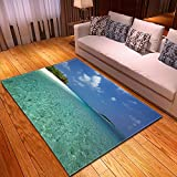 DRTWE Alfombra,Teppich,Velvet Area Rug For Living Room Turquoise Water Printed Large Size Anti-Skid Fluffy Shaggy Rug Bedroom Doorway Carpet Nursery Play Pad Carpet Runner,120 * 160Cm