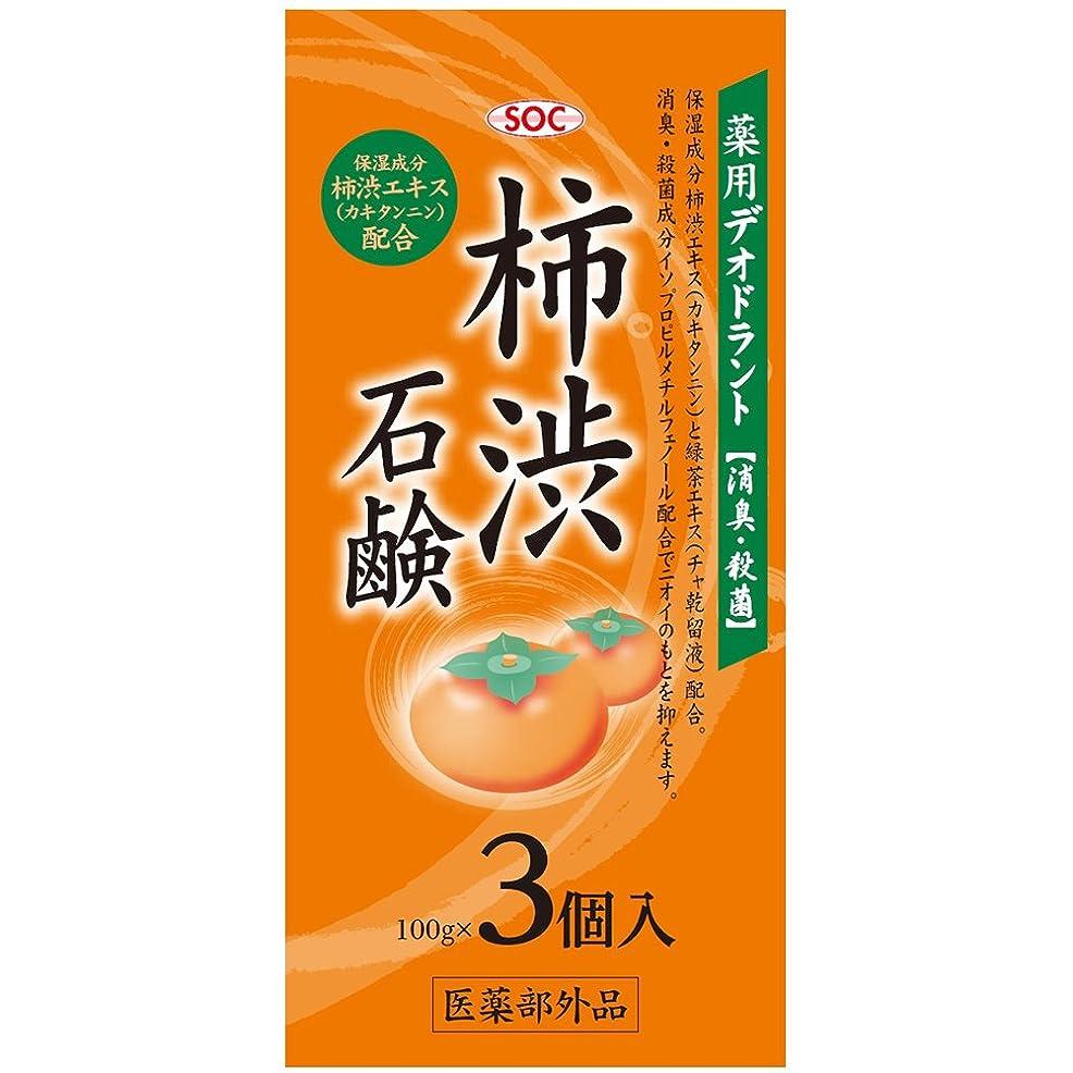 リダクター量でストロークSOC 薬用柿渋石鹸 3P (100g×3)