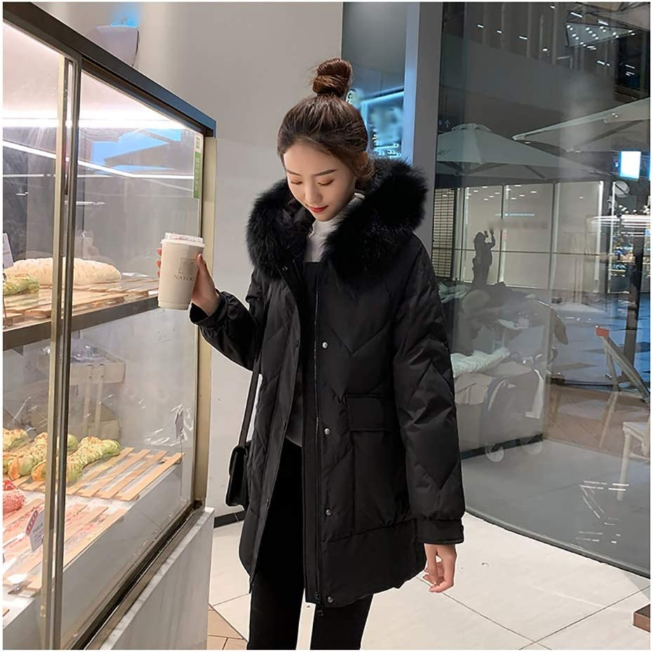 Women's Long Down Coat with Jacke Quilted Hood Spring new work one after SEAL limited product another Fur Windproo