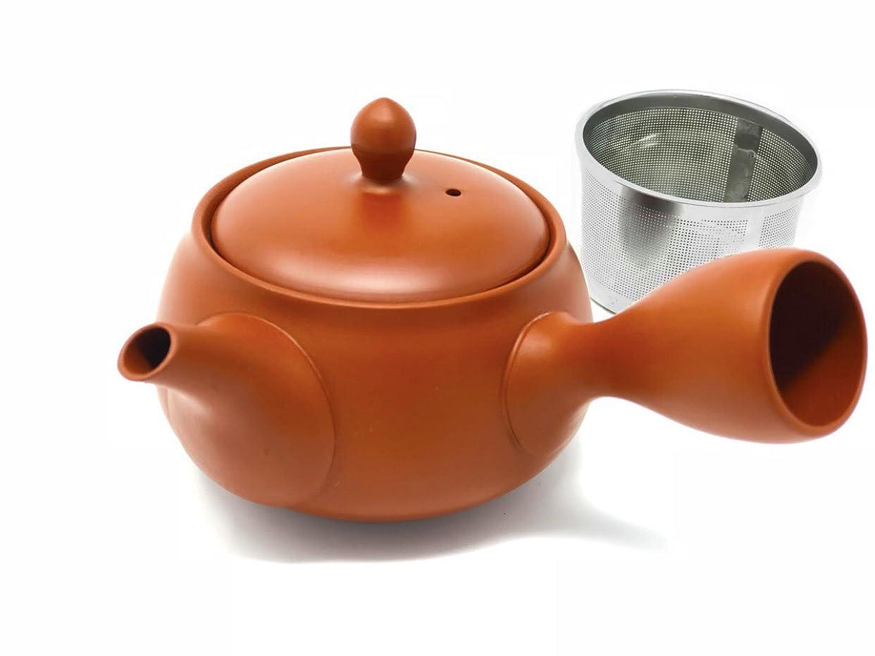 格納くちばし征服【 洗いやすい茶こし付 】味がまろやかになる 常滑焼 急須/液だれしにくい 深蒸し可 日本製 きつさこ