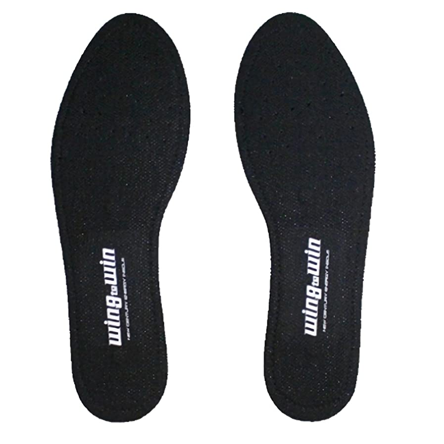 前進首謀者ニュースTQインソール ハードタイプ Lサイズ 足への負担を軽減 全身のバランスがとれ、人生の歩みが変わる (L)