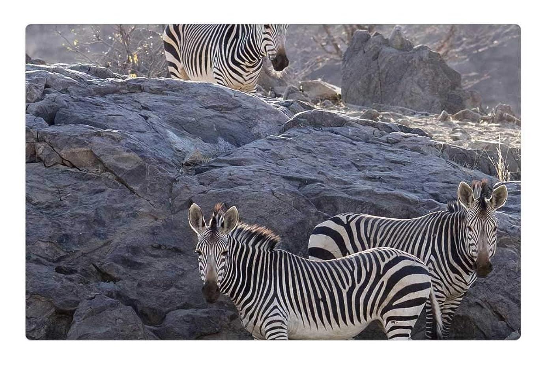 Tree26 Indoor Floor Rug/Mat (23.6 x 15.7 Inch) - Zebra Color Desert Mountains Mountain Zebra