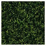 """★ 3RD STREET INN™ GREENERY PANELS - 3rd Street Inn™ offers the highest quality, most realistic, artificial foliage on the market today. Each 3rd Street Inn™ Greenery Panel provides 20"""" x 20"""" of coverage and is available as a 2-pack, 4-pack, and 12-pa..."""