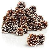 com-four® 30x Tannenzapfen weiße Spitze - Pinienzapfen als Weihnachtsdekoration - Zapfen Deko - Streudeko - Bastel Set - Weihnachtsschmuck (30 Stück - weiße Spitze)