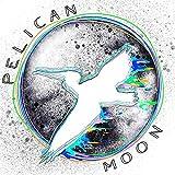 Pelican Moon (Remastered) [Explicit]