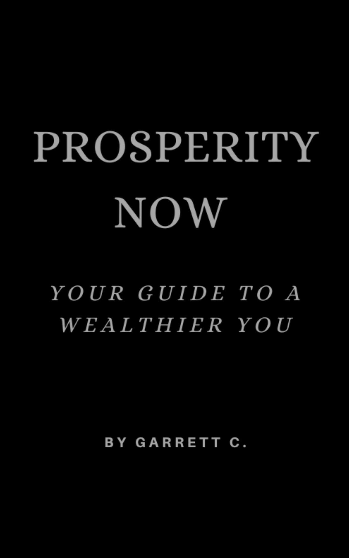 PROSPERITY NOW (Prosperity Series Book 1)