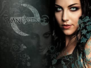 Amy Lee & Evanescence Promos 24X36 New Printed Poster Rare #TNW331941