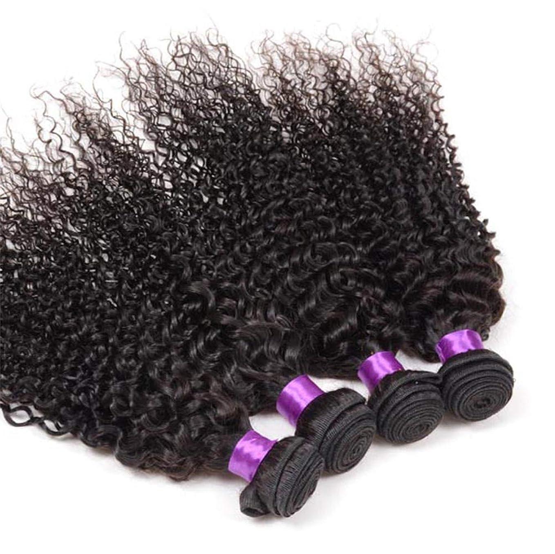 漁師手段規則性女性の髪の織り密度130%ブラジルの巻き毛1束ブラジルの人間の毛髪の束ブラジルの巻き毛の束ナチュラルカラー(100 +/- 5g)/ pc