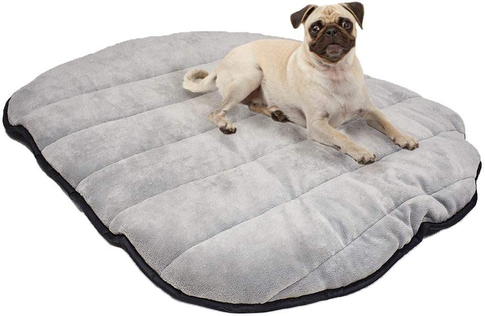 Max and Neo Travel Dog Max 40% OFF Bed 30