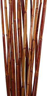 Green Floral Crafts | Natural River Cane | Pack of 15 - Rustic Brown