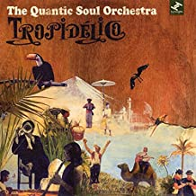 Best the quantic soul orchestra tropidelico Reviews