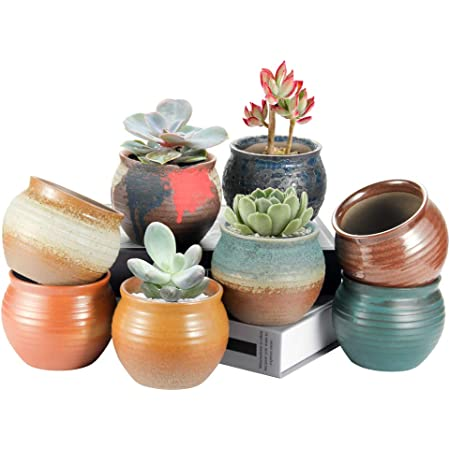 Laerjin Small Succulent Pots, 4 Inch Pots for Plants with Drainage Hole, Ideal Indoor Decor Ceramic Pots with Natural Colors, Set of 8