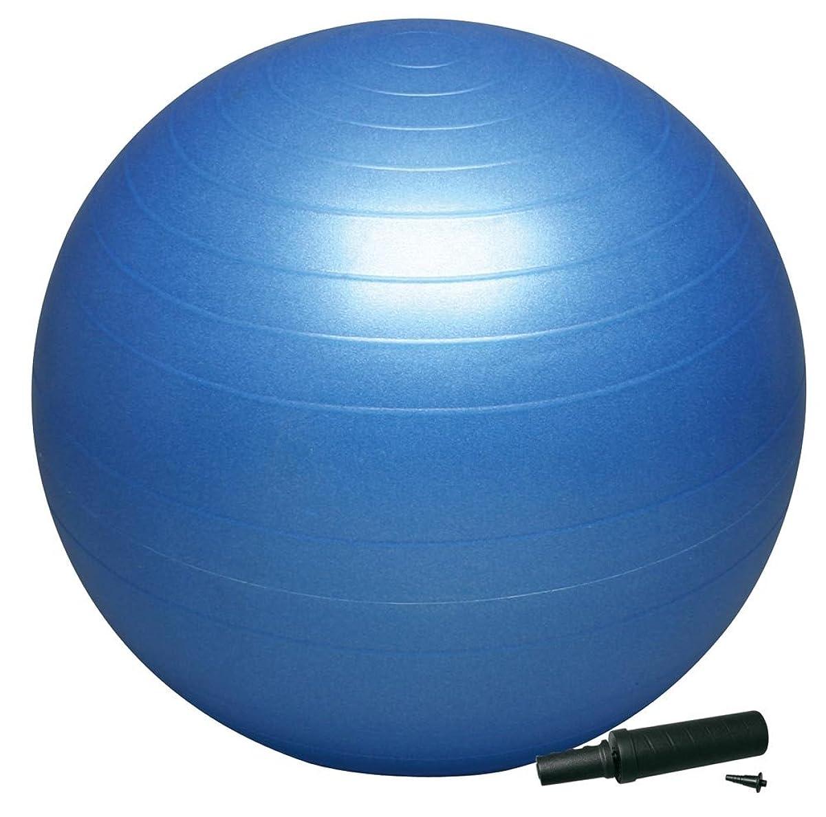 放牧する広まったフォージHATAS(ハタス) バランスボール セーフティ 55cm ポンプ付 DB55P