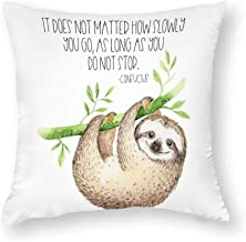 Decorative Pillow Covers It Does Not Matter Throw Pillow Case Cushion Cover Home Decor,Square 22 X 22 Inches