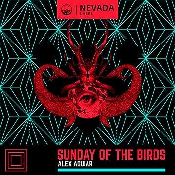 Sunday Of The Birds