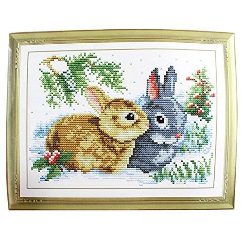Kit Contado de Punto de Cruz Estampado de Patrón de Hierba, Conejos para Damas