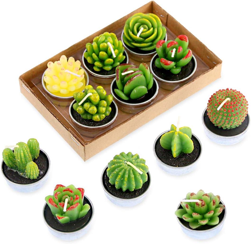 Swpeet Super beauty product restock quality top 12Pcs Decorative Succulent Cactus C Max 78% OFF Candles Tealight Kit