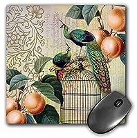3drose LLC 8x 8x 0.25ヴィンテージフランスPeacocks and Apricots on a鳥ケージマウスパッド(MP 79353_ 1)