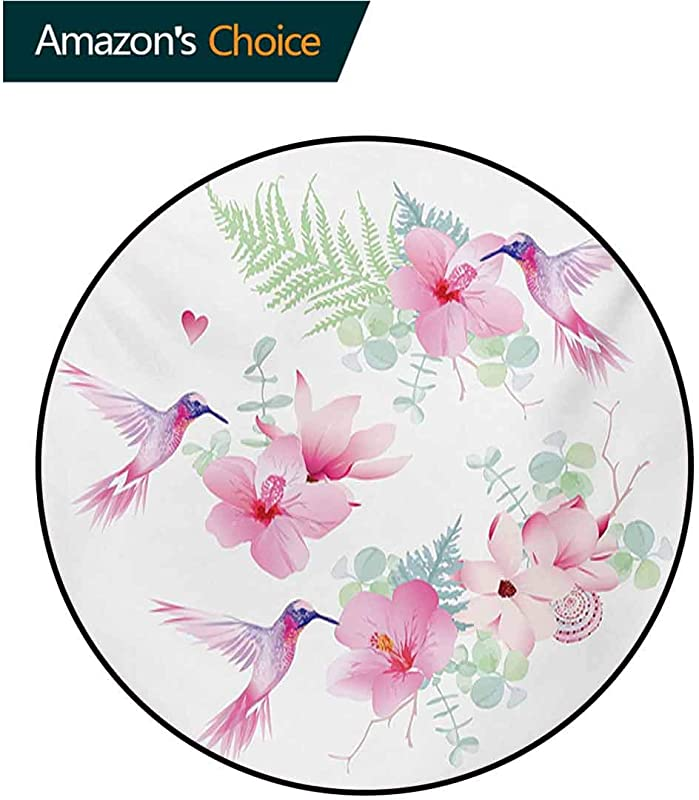 Hummingbirds Rug Round Home Decor Area Rugs Tropical Flowers With Flying Hummingbirds Wild Nature Blooms Non Skid Bath Mat Living Room Bedroom Carpet Diameter 35 Inch Pale Pink Pale Green Purple