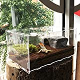 Likeitwell Bulary Reptile Breeding Box Acrylique Transparent Pet Reptile Box Acrylique Reptile Terrarium Petit Pet Reproduction Boîte
