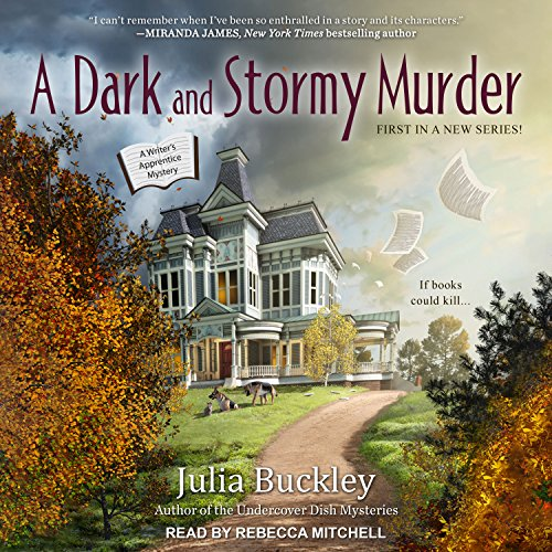 A Dark and Stormy Murder audiobook cover art
