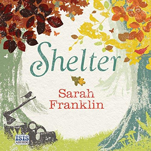 Shelter cover art