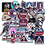 30 PCS Set of Colorado Vinyl Avalanche Stickers Pack Colorado Decal Avalanche 2-3 inches