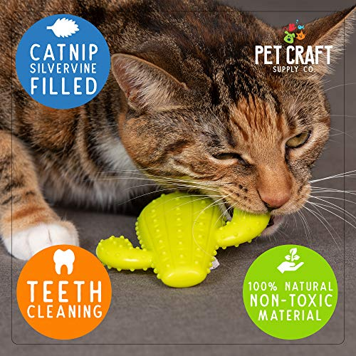 Pet Craft Supply Cactus Interactive Cat Toy Chew Toy Teeth