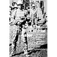 Twice the Work of Free Labor: The Political Economy of Convict Labor in the New South (Haymarket Series)