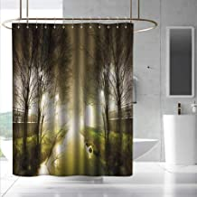Forest Small Shower Curtain Water Channel Foggy Weather Trees Grass City Street at Winter Night Mystery Fashionable Pattern W55 x L84 White Green Brown