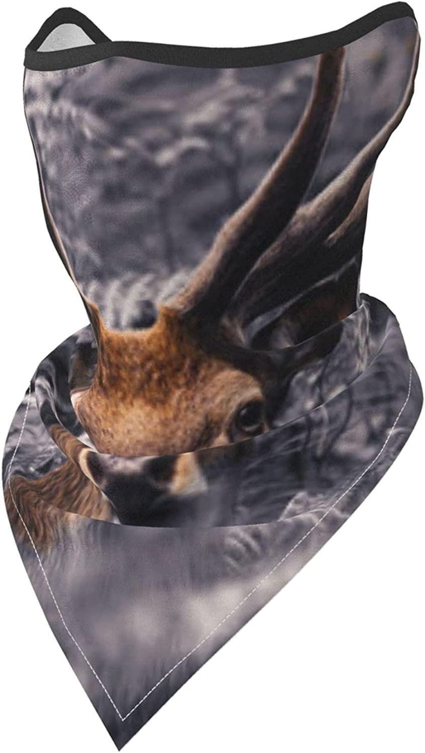 Deer in The Bushes Breathable Bandana Face Mask Neck Gaiter Windproof Sports Mask Scarf Headwear for Men Women Outdoor Hiking Cycling Running Motorcycling