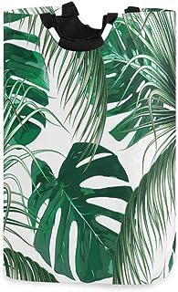 ZOMOY Grand Organiser Paniers pour Vêtements Stockage,Feuilles de Palmier Tropical Jungle Leaf Seamless,Panier à Linge en ...