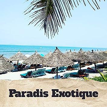 Paradis Exotique - Musique Chillout des Côtes Tropicales