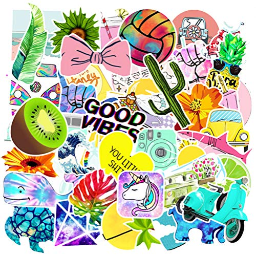 100 Pcs Vsco Cute Stickers, The Vsco Waterproof Sunproof Vinyl Sticker for Water Bottles Laptop Luggage Cup Computer Mobile Phone decoraton for Teens Girls Adults.