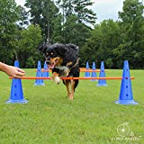 Lord Anson Dog Agility Hurdle Cone Set - Canine Agility Training Set - Obedience, Agility, and Rehabilitation - 8 Agility Cones and 4 Agility Rods