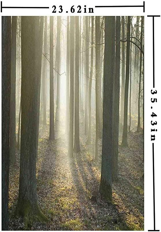 3D Decorative Film Privacy Window Film No Glue Foggy Oak Forest In Autumn Morning Sunbeams Entering From The Back Image Print Door Sticker Glass Film 23 62 In By 35 43in Tan And White