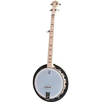 Deering Goodtime 2 5-String Banjo