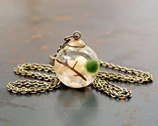 Live Marimo Moss Ball Glass Terrarium Necklace
