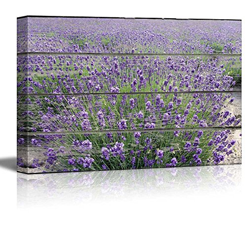 "wall26 Canvas Wall Art - Purple Lavender Field on Vintage Wood Textured Background - Rustic Country Style Modern Giclee Print Gallery Wrap Home Decor Ready to Hang - 24"" x 36"""