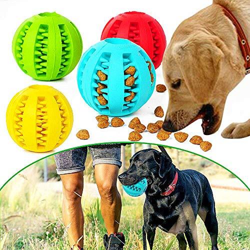 Eva Shop® Premium Zahnpflege Ball mit Minzgeschmack Hundespielzeug aus Naturkautschuk - Intelligentes Spielzeug für Hunde und Katzen - Kauspielzeug Tiere - verschidenen Größen und Farben (S - 5cm)